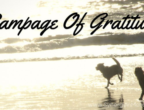 Rampage of Gratitude!